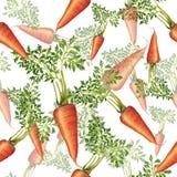 Modelo inconsútil de zanahorias frescas Imagen de archivo libre de regalías
