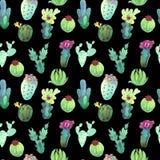 Modelo inconsútil del cactus de la acuarela Succulents vibrantes coloridos del cactus stock de ilustración
