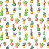 Modelo inconsútil del cactus de la acuarela Cactus vibrante colorido en potes y otros succulents Foto de archivo libre de regalías