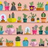 Modelo inconsútil del cactus de la naturaleza de la planta tropical del ejemplo casero suculento del vector ilustración del vector