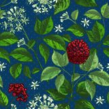 Modelo inconsútil del color del bosquejo botánico realista de la tinta con la colección floral de las hierbas de la raíz, de las  stock de ilustración