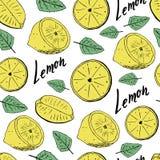 Modelo inconsútil del drenaje de la mano de limones con las hojas Ilustración del vector stock de ilustración