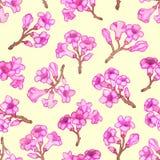 Modelo inconsútil del flor rosado del rododendro Ilustración del vector ilustración del vector