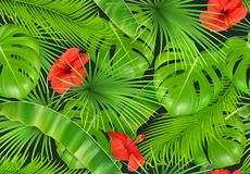 Modelo inconsútil del follaje de la selva fondo del vector 3D Fotos de archivo