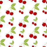 Modelo inconsútil del fondo de la fruta con el ejemplo dibujado mano del vector de la cereza del bosquejo Imágenes de archivo libres de regalías