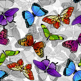 Modelo inconsútil del fondo de la mariposa Foto de archivo