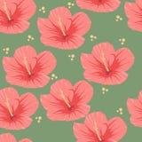 Modelo inconsútil del hibisco rosado tropical ilustración del vector