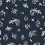 Modelo inconsútil del invierno con los conos y la picea dibujados mano del pino Fotos de archivo libres de regalías