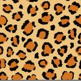 Modelo inconsútil del leopardo Fotografía de archivo