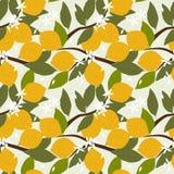 Modelo inconsútil del limón fresco