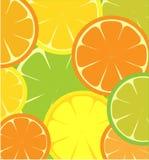 Modelo inconsútil del limón y de la naranja rebanados Fotografía de archivo
