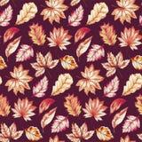 Modelo inconsútil del otoño Imagen de archivo