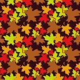 Modelo inconsútil del otoño Fotos de archivo libres de regalías
