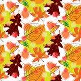 Modelo inconsútil del otoño colorido Foto de archivo