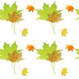 Modelo inconsútil del otoño de la acuarela Fondo colorido de las hojas de arce Fotografía de archivo libre de regalías