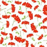 Modelo inconsútil del otoño del vector con las bayas y las hojas rojas Modelo inconsútil floral elegante Bayas de serbal del vect Fotos de archivo