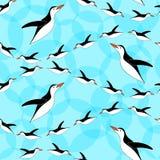 Modelo inconsútil del pingüino Fondo para una tarjeta de la invitación o una enhorabuena El zambullirse de los pingüinos Imagen de archivo