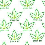 Modelo inconsútil del té verde Imagen de archivo
