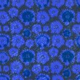 Modelo inconsútil del vector con acianos Ejemplo del fondo floral Imagenes de archivo
