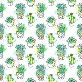 Modelo inconsútil del vector con el cactus El fondo colorido con la acuarela salpica y los cactus Colección suculenta Imágenes de archivo libres de regalías