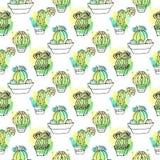 Modelo inconsútil del vector con el cactus El fondo colorido con la acuarela salpica y los cactus Colección suculenta Fotos de archivo libres de regalías