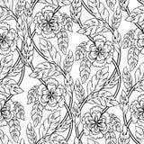 Modelo inconsútil del vector con el ornamento floral Fotos de archivo
