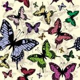 Modelo inconsútil del vector con las mariposas Imágenes de archivo libres de regalías