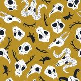 Modelo inconsútil del vector con los cráneos animales Halloween o día del diseño muerto para la tela con los cráneos lindos libre illustration