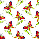 Modelo inconsútil del vector con los insectos, fondo colorido con las mariposas rojas y ramas con las hojas OM el contexto blanco Imagenes de archivo