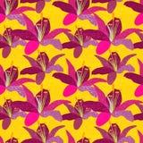 Modelo inconsútil del vector con los lirios Ejemplo del fondo floral Foto de archivo