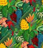 Modelo incons?til del vector con los loros tropicales con las flores y las hojas de palma ex?ticas stock de ilustración