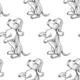 Modelo inconsútil del vector con los perritos del perro de afloramiento IL dibujado mano Fotos de archivo