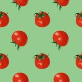 Modelo inconsútil del vector con los tomates realistas rojos Fotos de archivo libres de regalías