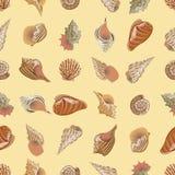 Modelo inconsútil del vector Conchas de berberecho del mar y del río de diversos tipos y formas libre illustration
