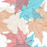 Modelo inconsútil del vector de hojas de arce