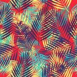 Modelo inconsútil del vector de hojas tropicales de la palmera Foto de archivo libre de regalías