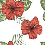 Modelo inconsútil del vector de hojas tropicales verdes con las flores rojas del hibisco libre illustration