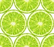 Modelo inconsútil del vector de la cal citrus libre illustration