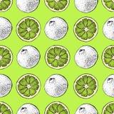 Modelo inconsútil del vector de la cal Objetos exhaustos de la mano con el pedazo cortado de cal en un fondo verde Agrios del ver libre illustration