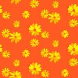 Modelo inconsútil del vector de la margarita floral anaranjada de la margarita ilustración del vector
