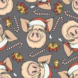 Modelo inconsútil del vector de la Navidad del cerdo libre illustration
