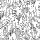 Modelo inconsútil del vector de la planta de los Succulents ilustración del vector