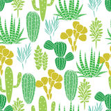 Modelo inconsútil del vector de la planta de los Succulents libre illustration