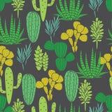 Modelo inconsútil del vector de la planta de los Succulents stock de ilustración