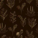 Modelo inconsútil del vector de las flores tropicales del oro en fondo negro stock de ilustración