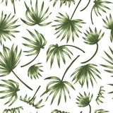 Modelo inconsútil del vector de las hojas verdes de la palmera en el fondo blanco libre illustration