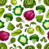 Modelo inconsútil del vector de las verduras de la col libre illustration