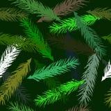 Modelo inconsútil del vector de ramas spruce stock de ilustración