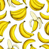 Modelo inconsútil del vector del plátano Estilo artístico dibujado mano aislado de la fruta del manojo y del verano del plátano d ilustración del vector