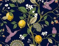 Modelo inconsútil del vector floral Papel pintado botánico Plantas, contexto de las flores de los pájaros Papel pintado exhausto  ilustración del vector